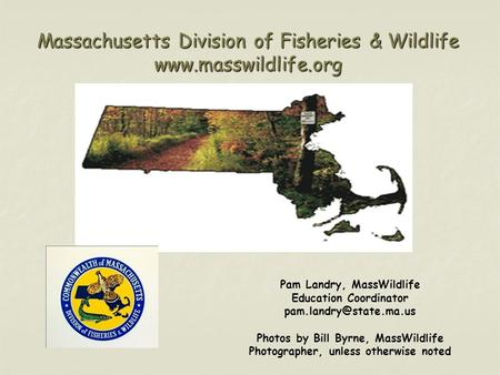Massachusetts Division of Fisheries & Wildlife  Pam Landry, MassWildlife Education Coordinator Photos by Bill.