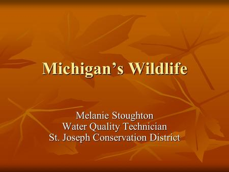 Michigan's Wildlife Melanie Stoughton Water Quality Technician St. Joseph Conservation District.