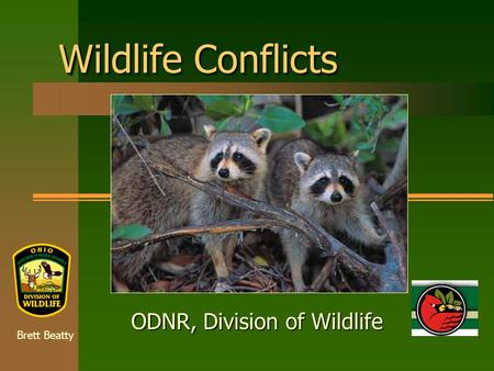 Wildlife Conflicts ODNR, Division of Wildlife Brett Beatty.