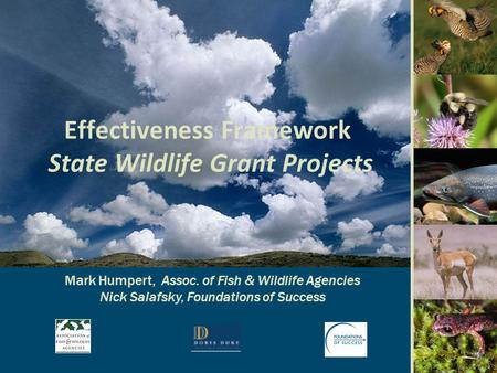 Effectiveness Framework State Wildlife Grant Projects Mark Humpert, Assoc. of Fish & Wildlife Agencies Nick Salafsky, Foundations of Success.