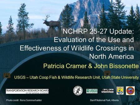 Photo credit: Reno SommerhalderBanff National Park, Alberta NCHRP 25-27 Update: Evaluation of the Use and Effectiveness of Wildlife Crossings in North.