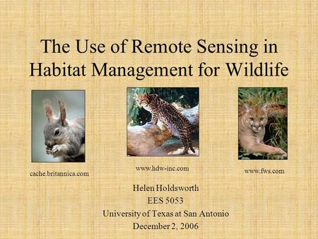 The Use of Remote Sensing in Habitat Management for Wildlife Helen Holdsworth EES 5053 University of Texas at San Antonio December 2, 2006 www.hdw-inc.com.