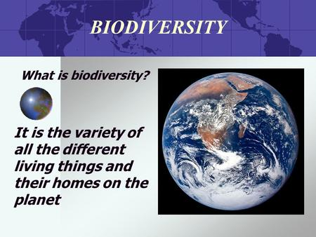 BIODIVERSITY What is biodiversity? It is the variety of all the different living things and their homes on the planet.
