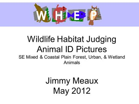 Wildlife Habitat Judging Animal ID Pictures SE Mixed & Coastal Plain Forest, Urban, & Wetland Animals Jimmy Meaux May 2012.