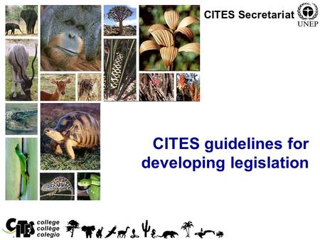 1 CITES guidelines for developing legislation CITES Secretariat.