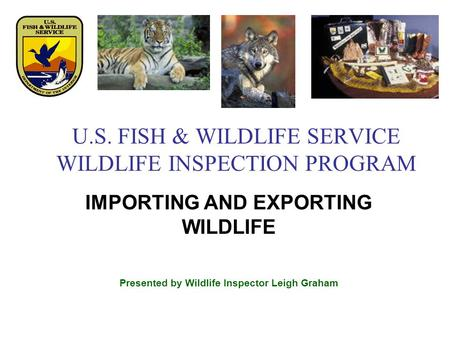 U.S. FISH & WILDLIFE SERVICE WILDLIFE INSPECTION PROGRAM IMPORTING AND EXPORTING WILDLIFE Presented by Wildlife Inspector Leigh Graham.
