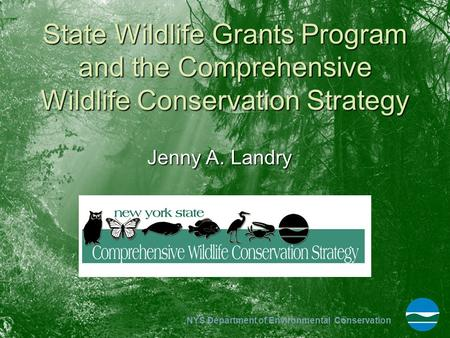 NYS Department of Environmental Conservation State Wildlife Grants Program and the Comprehensive Wildlife Conservation Strategy Jenny A. Landry.