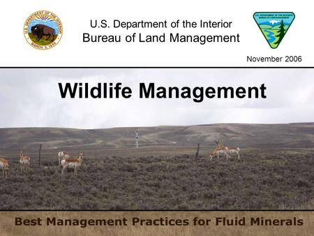 U.S. Department of the Interior Bureau of Land Management Wildlife Management November 2006.