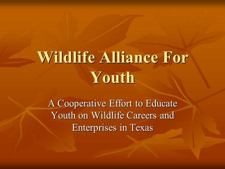 Wildlife Alliance For Youth A Cooperative Effort to Educate Youth on Wildlife Careers and Enterprises in Texas.
