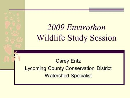 2009 Envirothon Wildlife Study Session Carey Entz Lycoming County Conservation District Watershed Specialist.