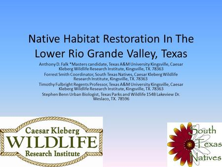 Native Habitat Restoration In The Lower Rio Grande Valley, Texas Anthony D. Falk *Masters candidate, Texas A&M University Kingsville, Caesar Kleberg Wildlife.