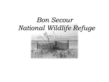 Bon Secour National Wildlife Refuge. The Bon Secour NWR consists of 6,700 acres of wildlife habitat lying directly west of Gulf Shores, Alabama on the.