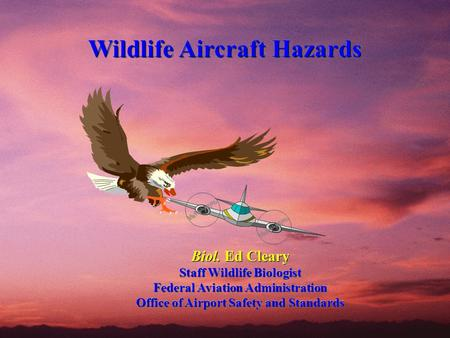 Wildlife Aircraft Hazards Wildlife Aircraft Hazards Biol. Ed Cleary Staff Wildlife Biologist Federal Aviation Administration Office of Airport Safety and.