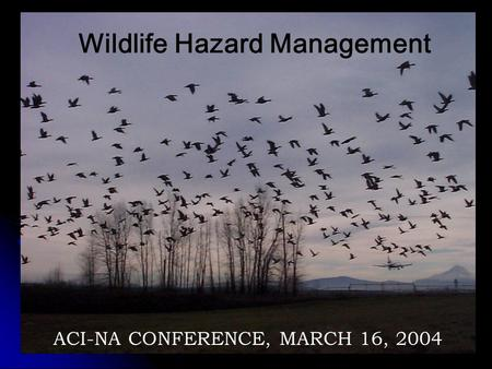 2007 - www.aerohabitat.org Wildlife Hazard Management ACI-NA CONFERENCE, MARCH 16, 2004.