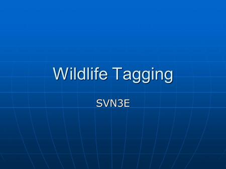 Wildlife Tagging SVN3E. Sampling Wildlife It can be difficult to make an exact count of the populations of animals, birds, and fish that move around their.