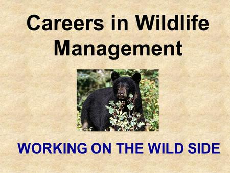 Careers in Wildlife Management WORKING ON THE WILD SIDE.