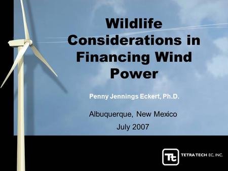 Wildlife Considerations in Financing Wind Power Albuquerque, New Mexico July 2007 Penny Jennings Eckert, Ph.D.