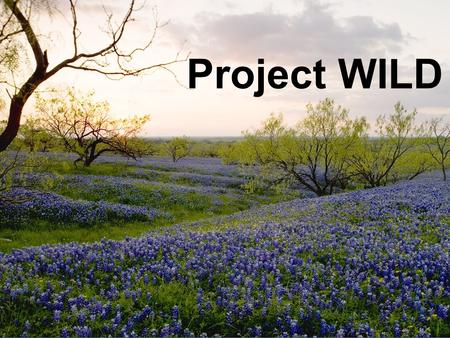 Project WILD. What the Public Should Know  Fish and wildlife resources are a public trust  Conservation and management of terrestrial and water resources.