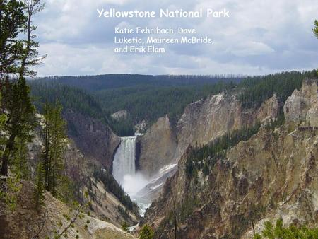 Yellowstone National Park Katie Fehribach, Dave Luketic, Maureen McBride, and Erik Elam.
