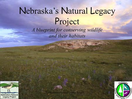 Nebraska's Natural Legacy Project A blueprint for conserving wildlife and their habitats.