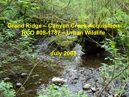 Grand Ridge – Canyon Creek Acquisition RCO #08-1787 – Urban Wildlife July 2008.