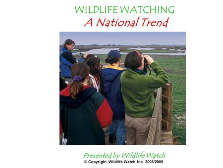 WILDLIFE WATCHING A National Trend Presented by Wildlife Watch © Copyright Wildlife Watch Inc. 2008/2009.