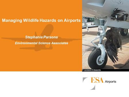 Managing Wildlife Hazards on Airports Environmental Science Associates