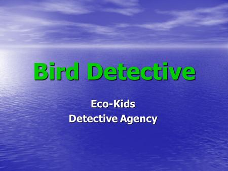 Bird Detective Eco-Kids Detective Agency. Bird Detective A Guide for Identification of Common Florida Birds.
