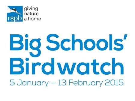Every year the RSPB asks children across the UK to count the birds in their school grounds.
