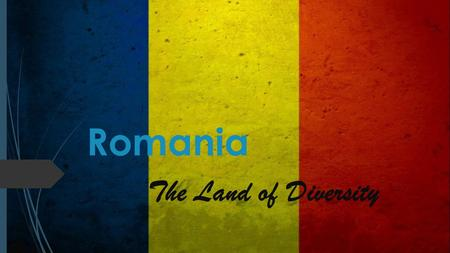 Romania The Land of Diversity. Why is Romania a land of Diversity Ethnic groups (2011)  88.9% Romanians  6.5% Hungarians  3.3% Roma  1.3% other minorities.