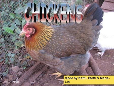 Made by Kathi, Steffi & Marie- Lin Steffi. 1.THE CHICKEN'S BODY (Steffi) 2.EGGS (Kathi) 3.DISEASES (Marie-Lin) 4. KEEPING CHICKENS (Kathi) 5.RAISING CHICKS.