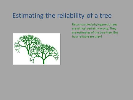 Estimating the reliability of a tree Reconstructed phylogenetic trees are almost certainly wrong. They are estimates of the true tree. But how reliable.