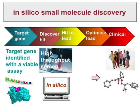 In silico small molecule discovery Sales Target gene Discover hit Hit to lead Optimise lead Clinical Target gene identified with a viable assay High throughput.