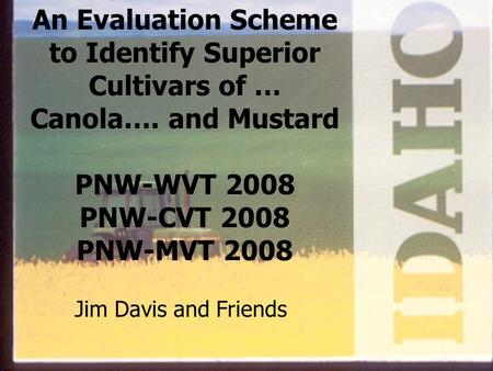 An Evaluation Scheme to Identify Superior Cultivars of … Canola…. and Mustard PNW-WVT 2008 PNW-CVT 2008 PNW-MVT 2008 Jim Davis and Friends.
