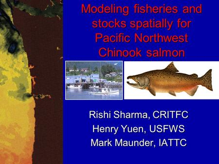 Modeling fisheries and stocks spatially for Pacific Northwest Chinook salmon Rishi Sharma, CRITFC Henry Yuen, USFWS Mark Maunder, IATTC.