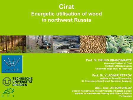 Cirat Energetic utilisation of wood in northwest Russia Prof. Dr. BRUNO BRANDIMARTE Honorary Prsident of Cirat Institute of Biodymnamic Università degli.