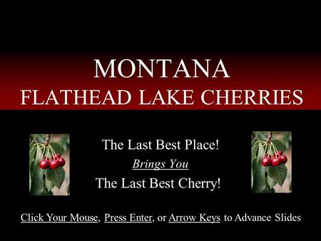 MONTANA FLATHEAD LAKE CHERRIES The Last Best Place! Brings You The Last Best Cherry!! Click Your Mouse, Press Enter, or Arrow Keys to Advance Slides.