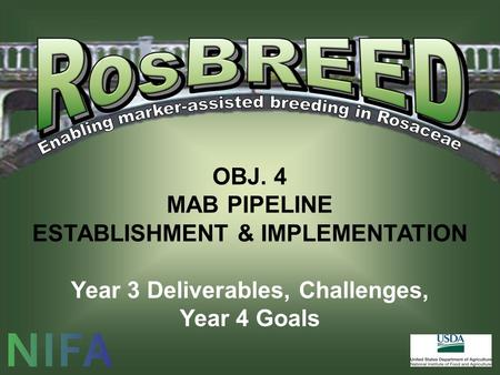 OBJ. 4 MAB PIPELINE ESTABLISHMENT & IMPLEMENTATION Year 3 Deliverables, Challenges, Year 4 Goals.