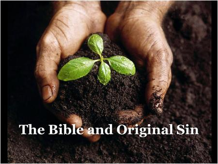"The Bible and Original Sin 1. ""In Christian theology the state of sin into which everyone is born as a result of the fall of Adam...According to this,"