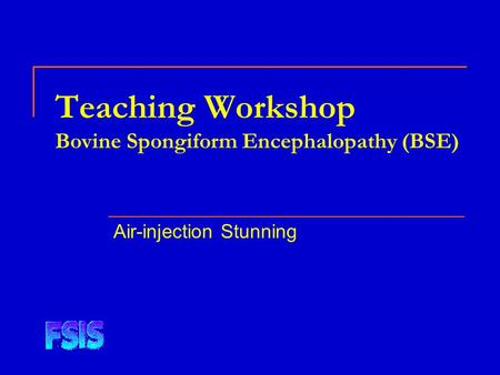 Teaching Workshop Bovine Spongiform Encephalopathy (BSE) Air-injection Stunning.