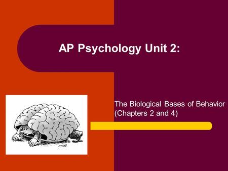 unit 5 outline ap psych myers Myers psychology ap chapter unit 5 test corrections - download as word doc (doc / docx), pdf file (pdf), text file (txt) or read online.