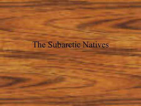 The Subarctic Natives. The subarctic natives were nomads living in a forbidding climate they had to endure great famines and some of the coldest winters.