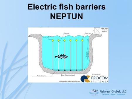 "Electric fish barriers NEPTUN. 1.""Informational"" electric field - electric energy absorbed to scare not to stun the fish. 2.Random alterations – prevent."