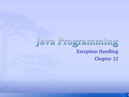 Exception Handling Chapter 12.  Errors- the various bugs, blunders, typos and other problems that stop a program from running successfully  Natural.