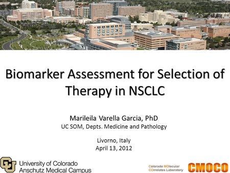 Biomarker Assessment for Selection of Therapy in NSCLC Marileila Varella Garcia, PhD UC SOM, Depts. Medicine and Pathology Livorno, Italy April 13, 2012.