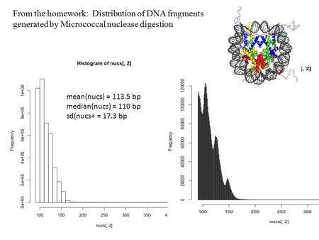 From the homework: Distribution of DNA fragments generated by Micrococcal nuclease digestion mean(nucs) = 113.5 bp median(nucs) = 110 bp sd(nucs+ = 17.3.