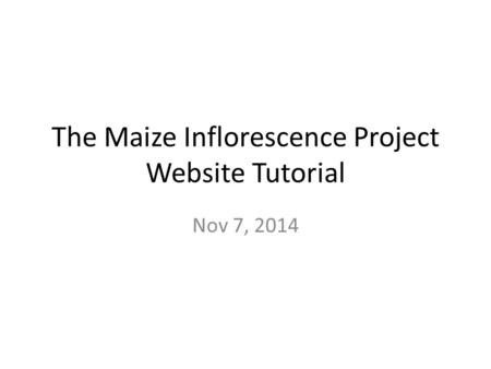 The Maize Inflorescence Project Website Tutorial Nov 7, 2014.