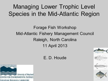Managing Lower Trophic Level Species in the Mid-Atlantic Region Forage Fish Workshop Mid-Atlantic Fishery Management Council Raleigh, North Carolina 11.