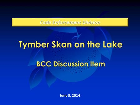 Tymber Skan on the Lake BCC Discussion Item June 3, 2014 Code Enforcement Division.
