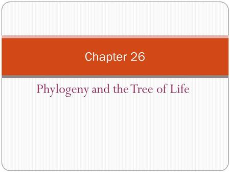 Phylogeny and the Tree of Life Chapter 26. Investigating the Tree of Life Phylogeny is the evolutionary history of a species or group of related species.